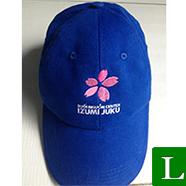 nón lưỡi trai - xưởng may nón lưỡi trai giá rẻ in logo theo yêu cầu bến tre  ms 27