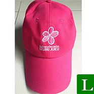 nón lưỡi trai - công ty may nón kết, nón lưỡi trai, nón du lịch giá rẻ tp hcm  ms 26